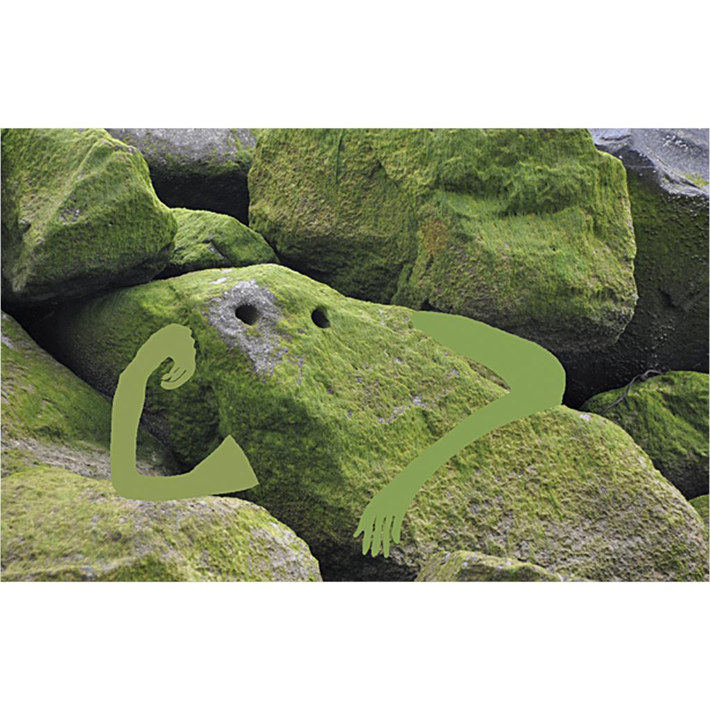 sandrine estrade boulet - home rocher a la cool