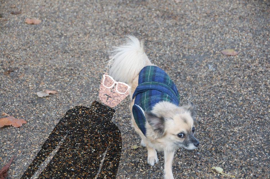 sandrine estrade boulet - wharol's-dog-sandrine-boulet
