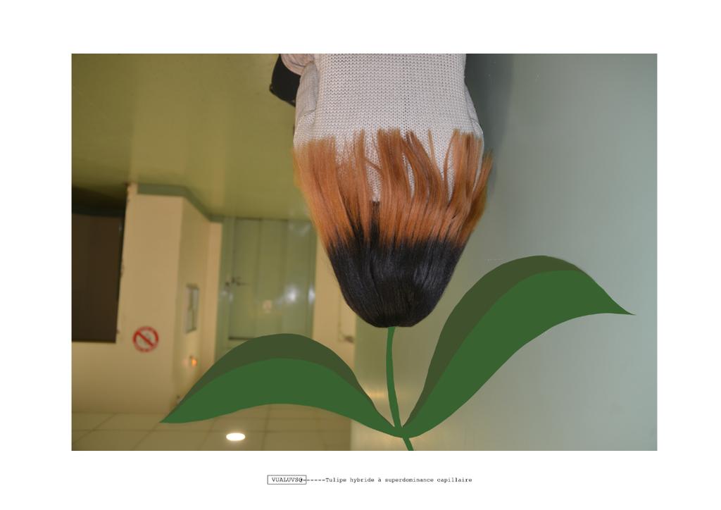 sandrine estrade boulet - Capture d'écran 2016-01-22 à 18.19.57