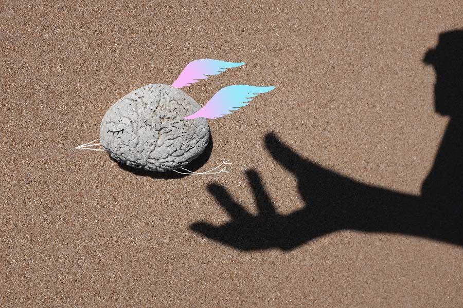 sandrine estrade boulet - l'oiseau-d'AL-Zheimer